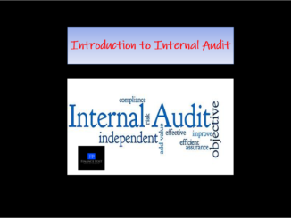introduction to internal audit